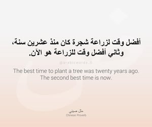 arabic, eco friendly, and life image