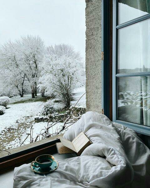 book, winter, and reading image