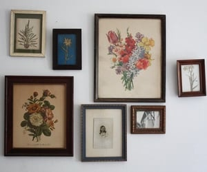 art, flowers, and wall image