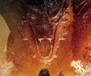 fantasy, bows, and dragons image
