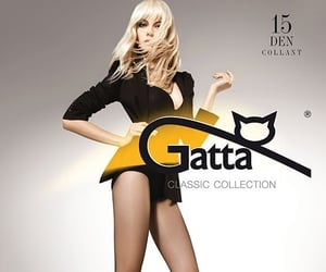 tights and eur pantyhose image