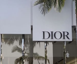 aesthetic, designer, and dior image