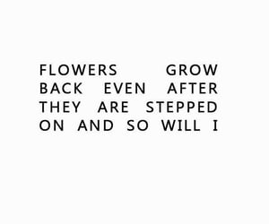 flowers, quote, and grow image