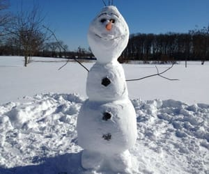 snow, olaf, and winter image