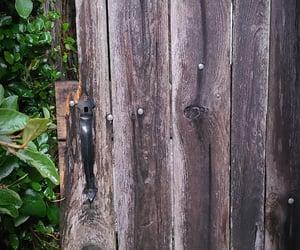 alice in wonderland, backyard, and door image