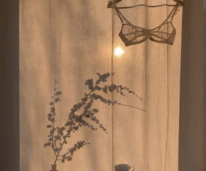 beige, sun, and flower image