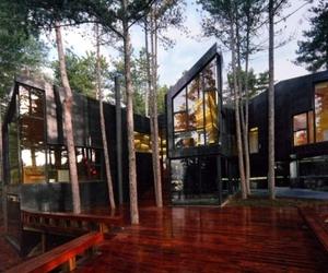 architecture, Arhitecture, and forest image