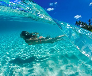 cool, summer, and swimming image