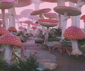 aesthetic, fairy, and mushroom image