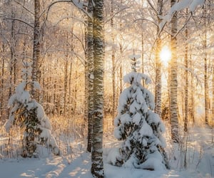 light, winter, and instagram image