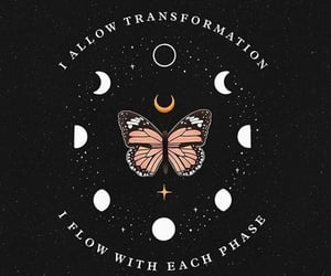 butterfly, moon, and quotes image