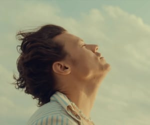 golden, Harry Styles, and harry image