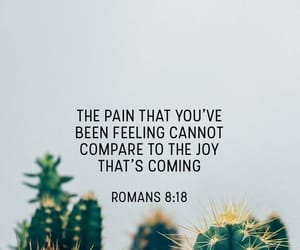bible, quote, and Romans image