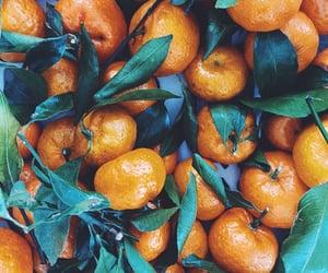 citrus, fruit, and mandarin image