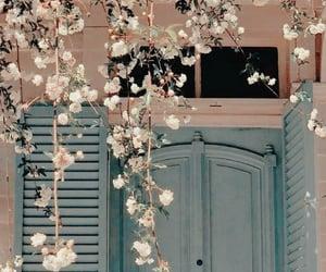 flowers, door, and aesthetic image
