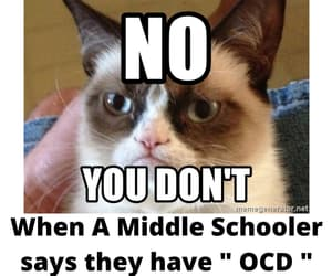lol, grumpy cat, and lmho image