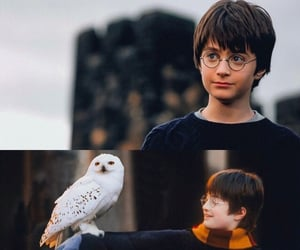 harry potter, magic, and kids image