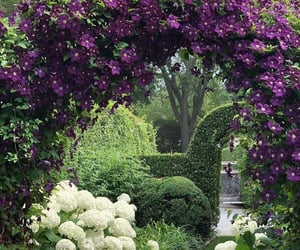 archway, beautiful, and beyond image