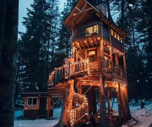 forest, lights, and cabin image