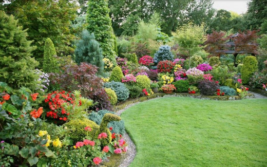 article, diy, and flower garden image