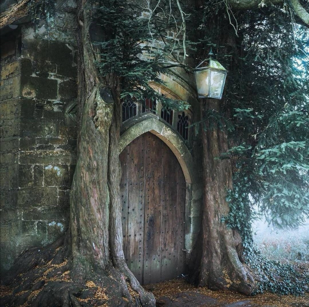 elf, medieval, and middle-earth image