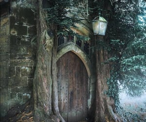 elf, middle-earth, and witcher image
