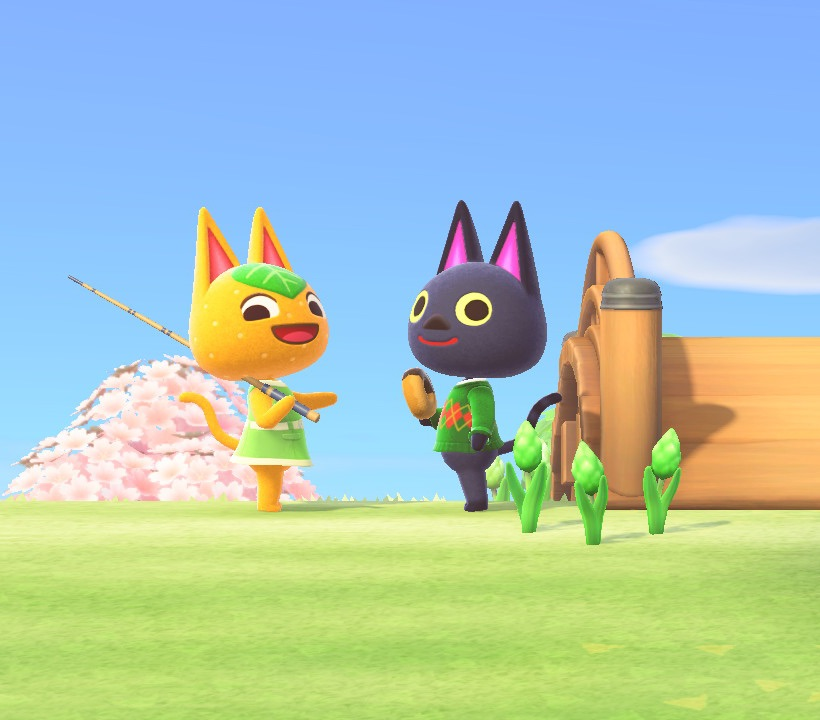 animal crossing, friendship, and kiki image