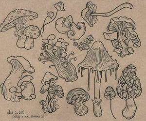 mushroom, art, and drawing image