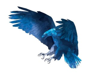blue, wallpaper, and ravenclaw image