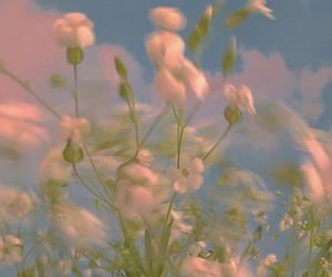 flowers, motion, and peace image