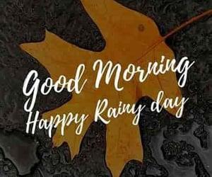 good morning, morning, and rain drops image