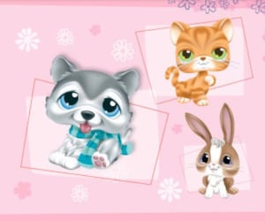 animals, lps, and memories image