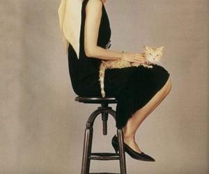 actress, audrey hepburn, and celebrity image