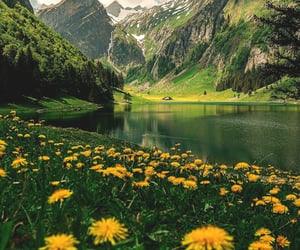 landscape and nature image