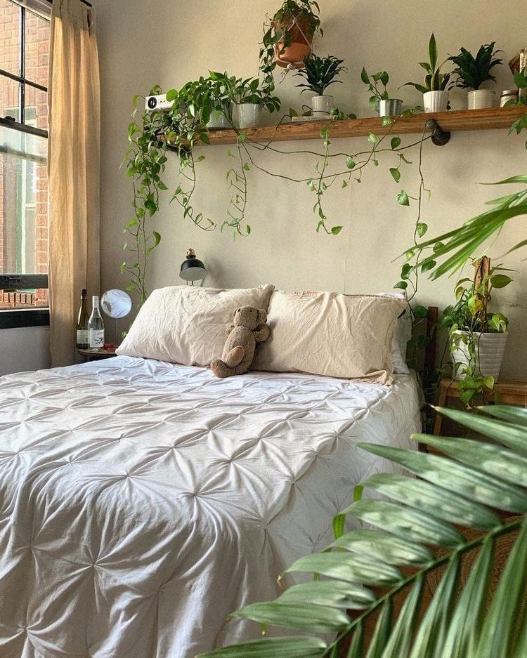 aesthetic, bed, and plants image