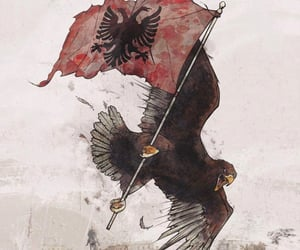 kosova, albania, and albanien image