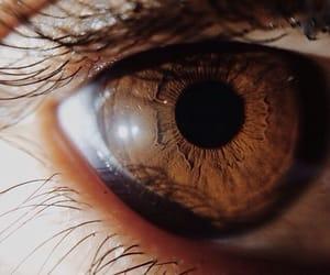 eye, brown, and aesthetic image