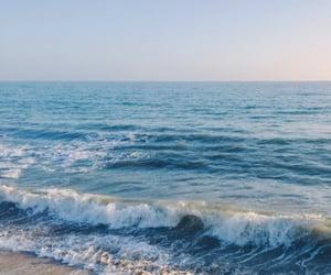 Ocean 🌊