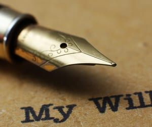 will and what is a will image