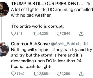 dumb, stupid, and trump cult image