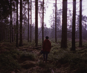 forest and person image