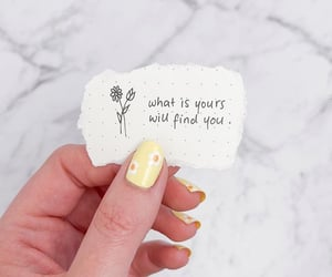 aesthetic, daisies, and design image