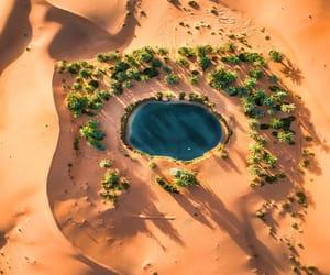 paradise, desert, and nature image