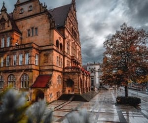 architecture, leaves, and nature image