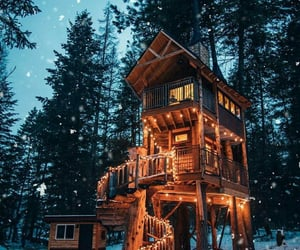 cosy, forest, and lights image