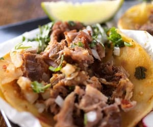 beef, carnitas, and dinner image