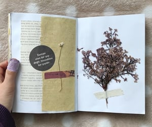 flowers, journal, and journaling image