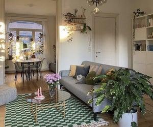 plants, design, and interior image