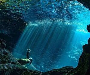 dive, nature, and hawaii image