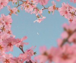 flowers, heart, and moon image